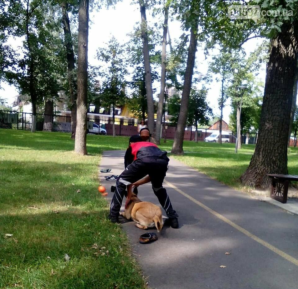 """Чому у парку """"Правика"""" поліція просить взуття відвідувачів?, фото-6"""
