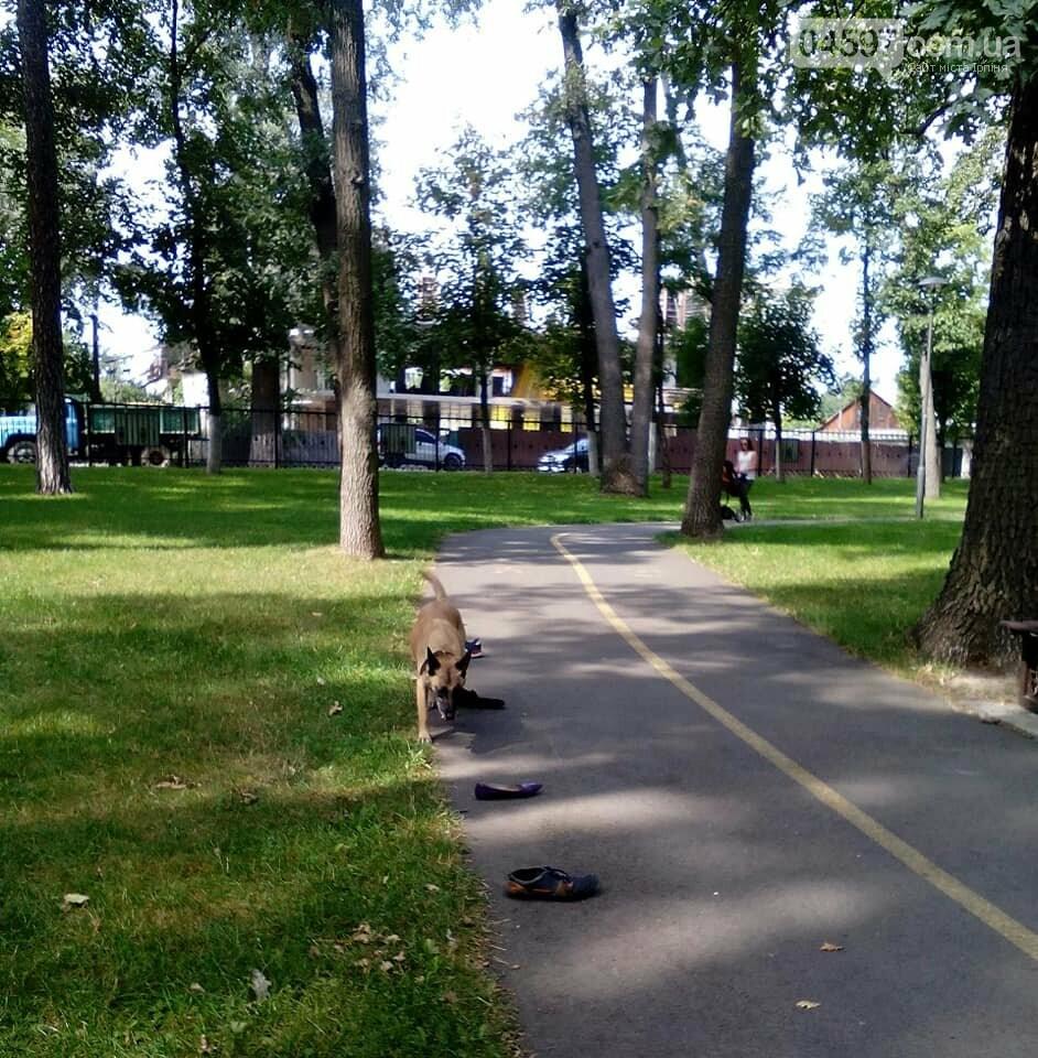 """Чому у парку """"Правика"""" поліція просить взуття відвідувачів?, фото-5"""