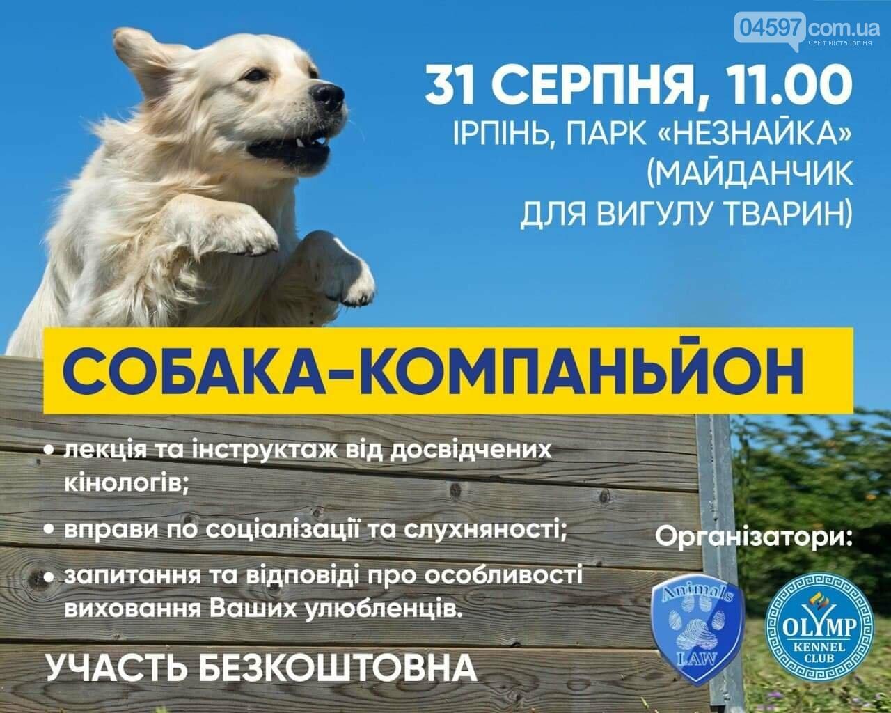 Собака-компаньйон: ірпінчан запрошують на безкоштовну лекцію , фото-1