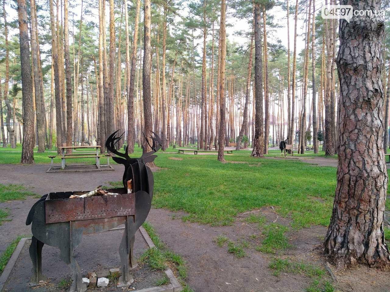 """У парку """"Центральний"""" нова мангальниця, фото-2"""