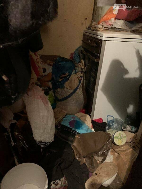 Собаки вили і стали в ряд провести її: сумний фінал про жінку, яка тримала 10 собак у квартирі, фото-5