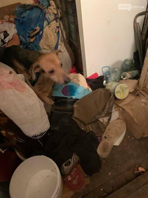 Собаки вили і стали в ряд провести її: сумний фінал про жінку, яка тримала 10 собак у квартирі, фото-6