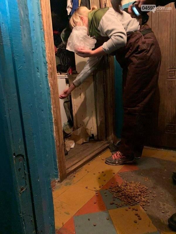 Собаки вили і стали в ряд провести її: сумний фінал про жінку, яка тримала 10 собак у квартирі, фото-4
