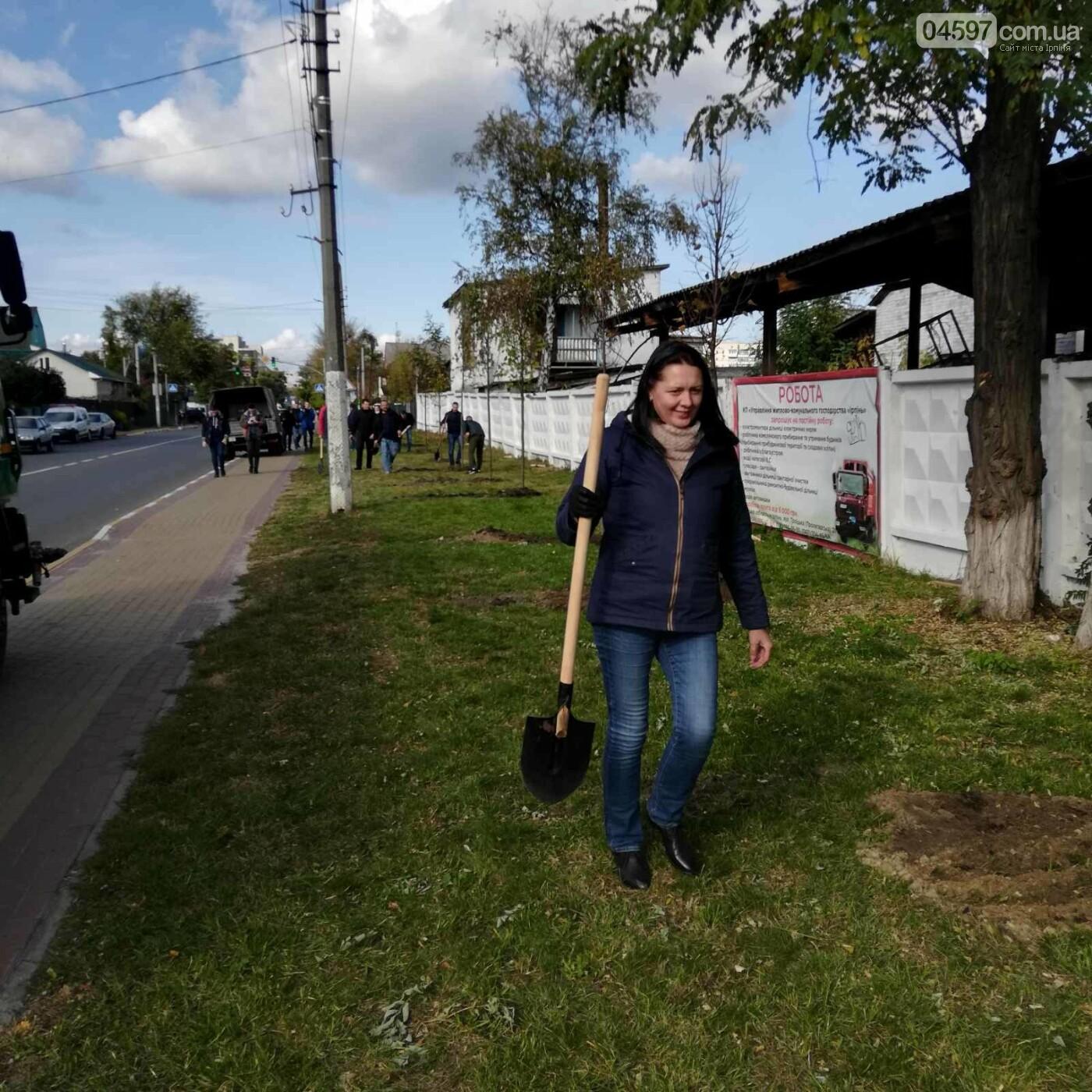 На головній вулиці Ірпеня висадили липову алею, фото-18