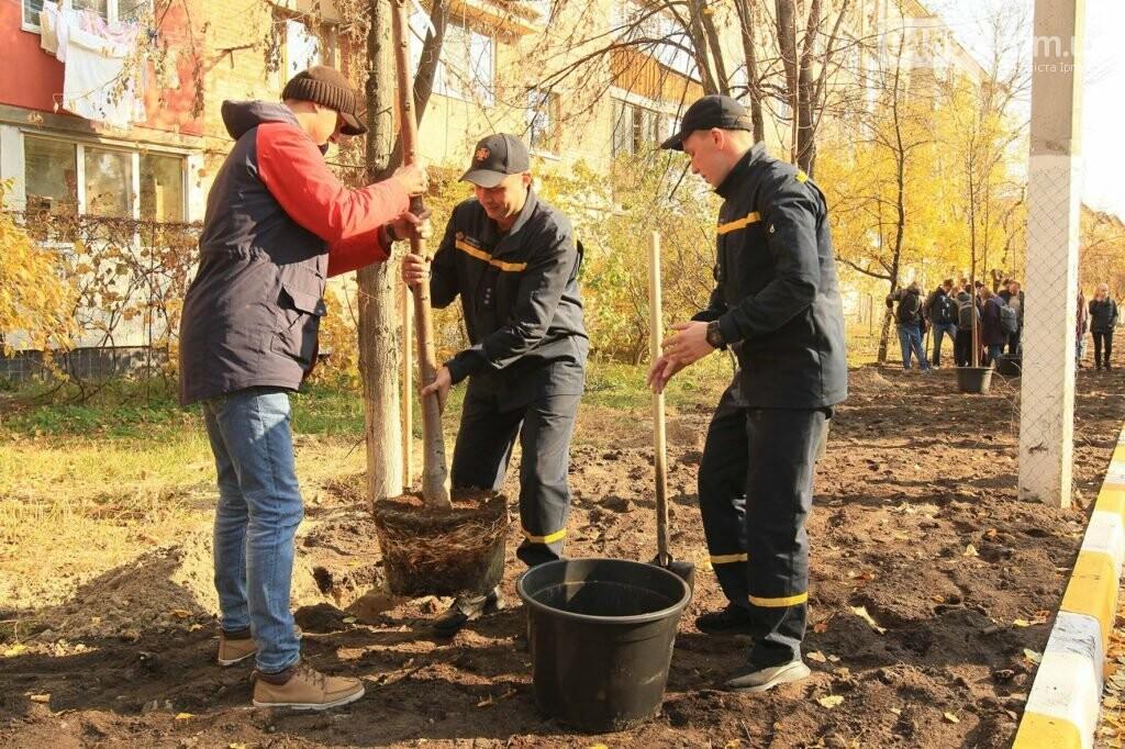 В Ірпені на Соборній продовжують саджати дерева, фото-2