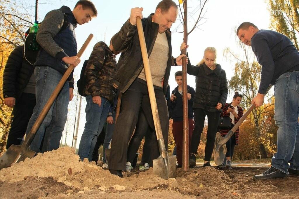 В Ірпені на Соборній продовжують саджати дерева, фото-1