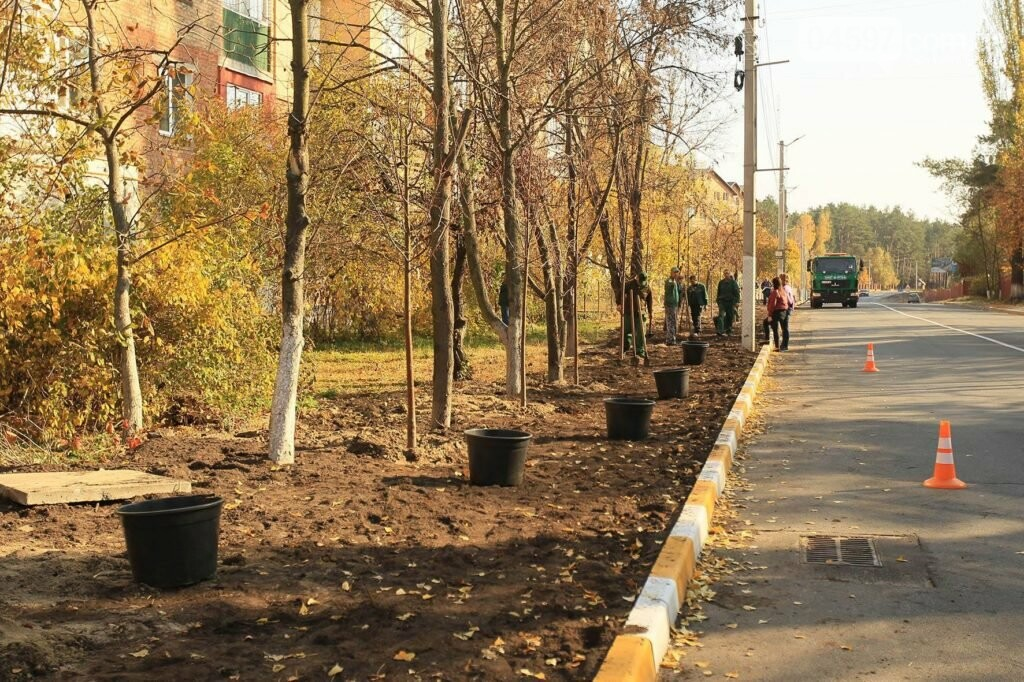 В Ірпені на Соборній продовжують саджати дерева, фото-5