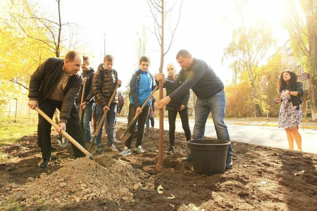 В Ірпені на Соборній продовжують саджати дерева, фото-6