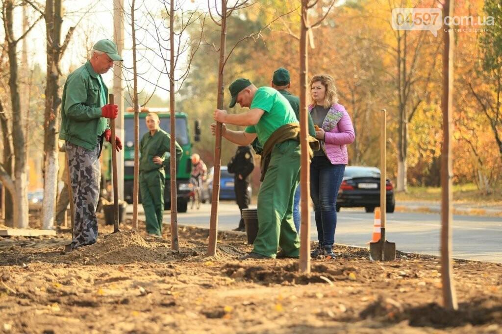 В Ірпені на Соборній продовжують саджати дерева, фото-7