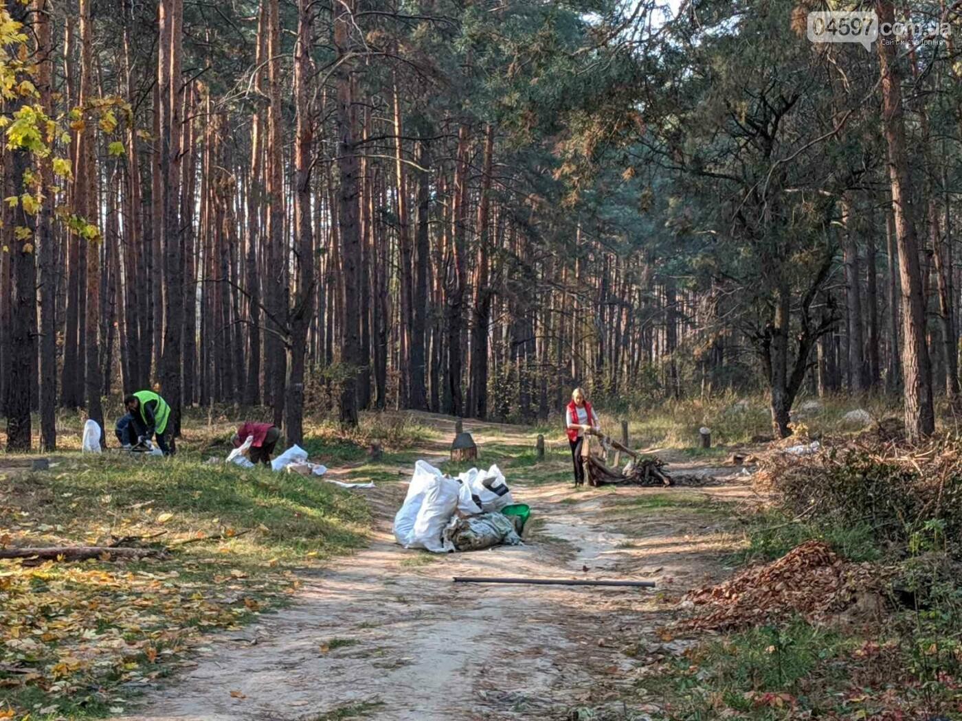 Ірпінчани рятують ліс: вивезли понад 100 мішків сміття, фото-2