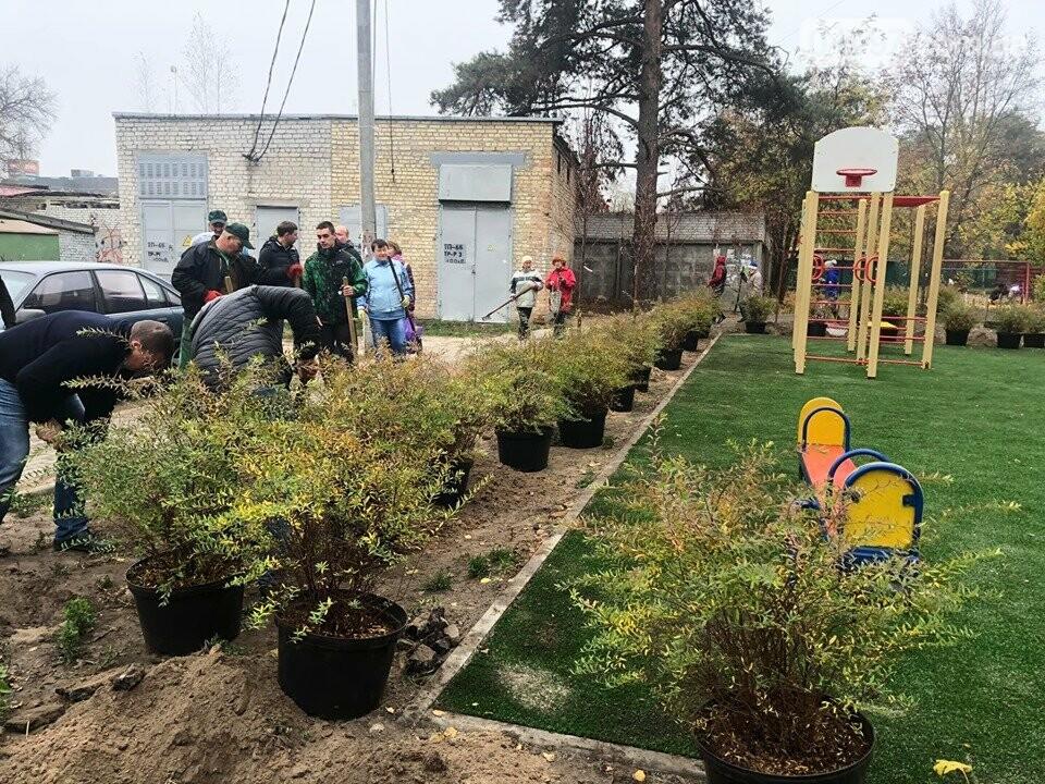 В Ірпені продовжують висаджувати молоді кущі та дерева, фото-3