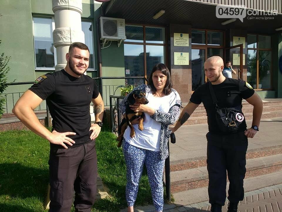 З початку року в Ірпені 200 безпритульних тварин стали домашніми , фото-2