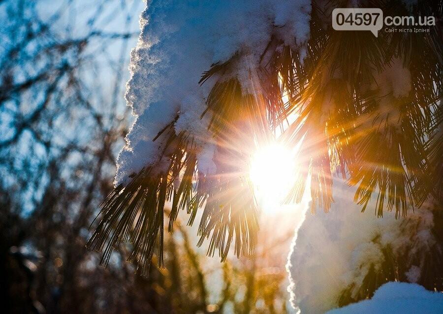 Зимове сонцестояння: сьогодні найкоротший день у році, фото-3