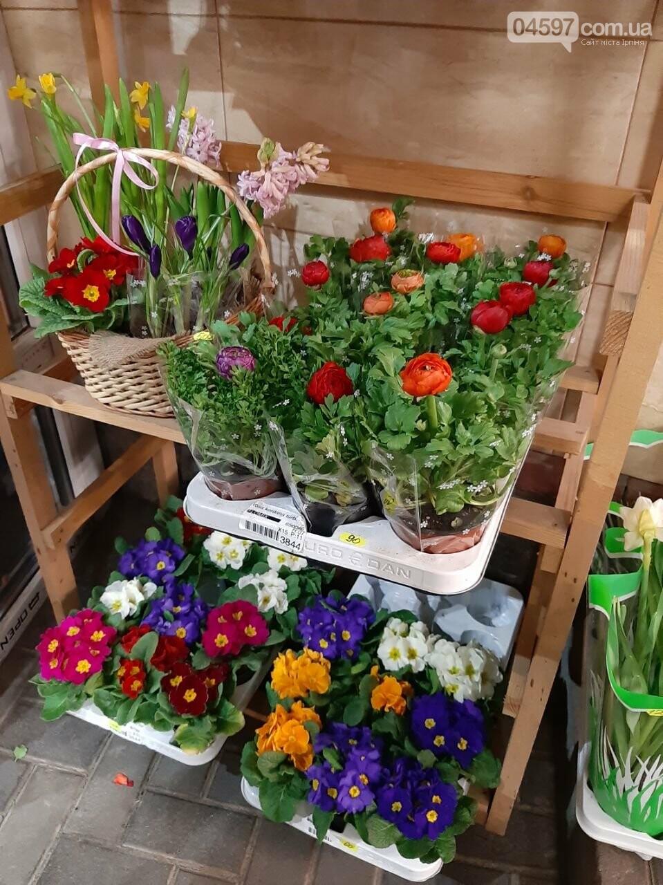 Тюльпани, троянди, нарциси - скільки коштуватиме букет на 8 Березня, фото-9