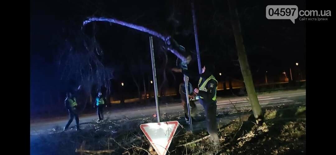 На Варшавці впало дерево на дроти, фото-3