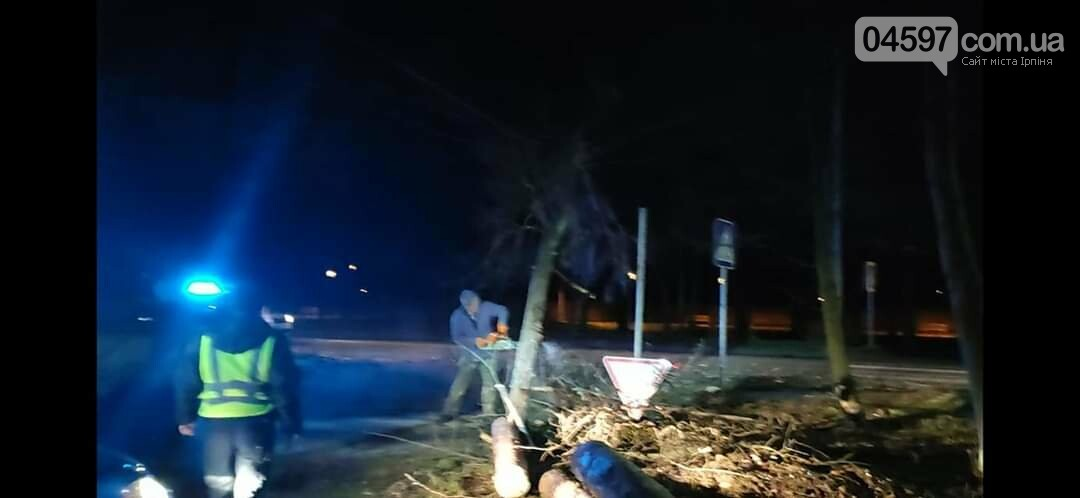 На Варшавці впало дерево на дроти, фото-4