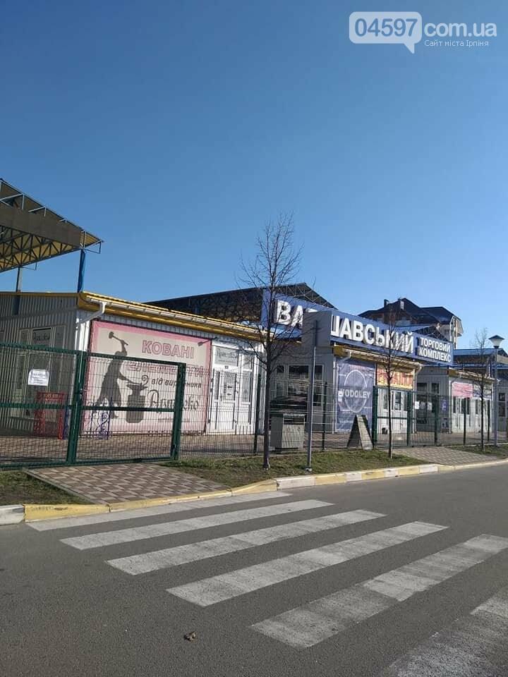 Численні порушення карантину: поліція зареєструвала 9 випадків за сьогодні, фото-1, Фото: Ірпінський відділ поліції ГУНП в Київській області