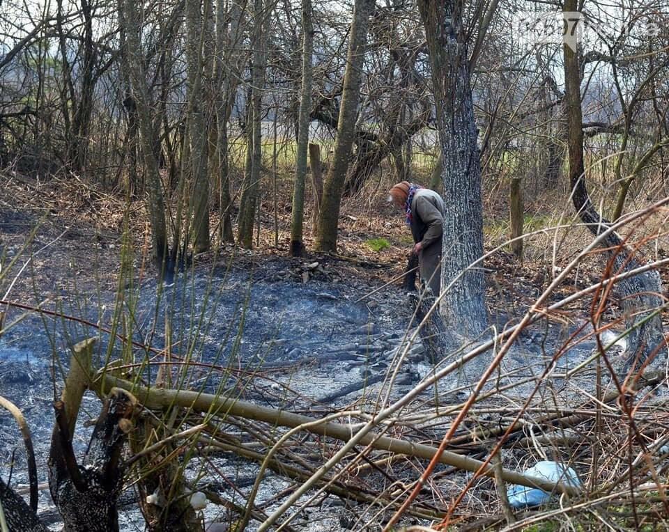 Як у фільмі жахів: пожежі в Чорнобилі знищили ліс та села, фото-16