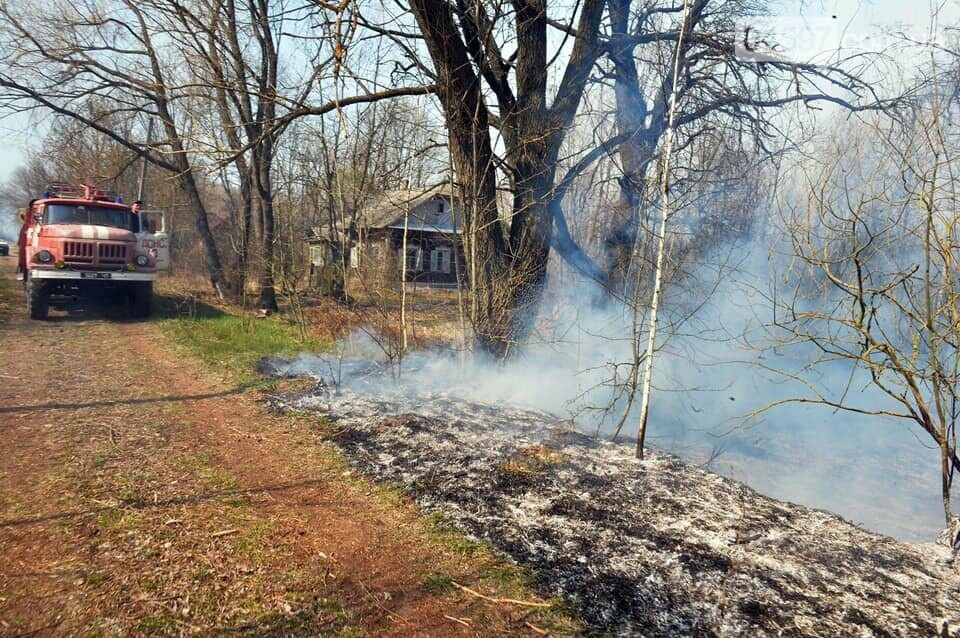 Як у фільмі жахів: пожежі в Чорнобилі знищили ліс та села, фото-14