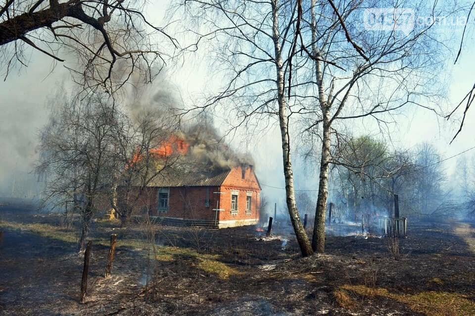 Як у фільмі жахів: пожежі в Чорнобилі знищили ліс та села, фото-13