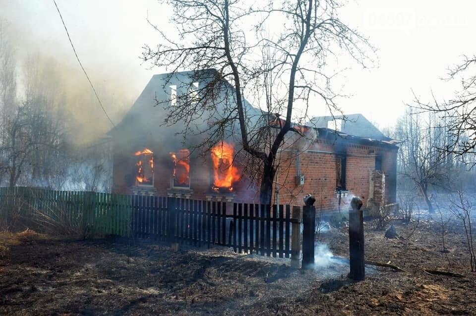 Як у фільмі жахів: пожежі в Чорнобилі знищили ліс та села, фото-12