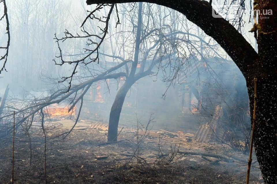 Як у фільмі жахів: пожежі в Чорнобилі знищили ліс та села, фото-11