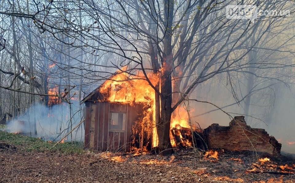 Як у фільмі жахів: пожежі в Чорнобилі знищили ліс та села, фото-9