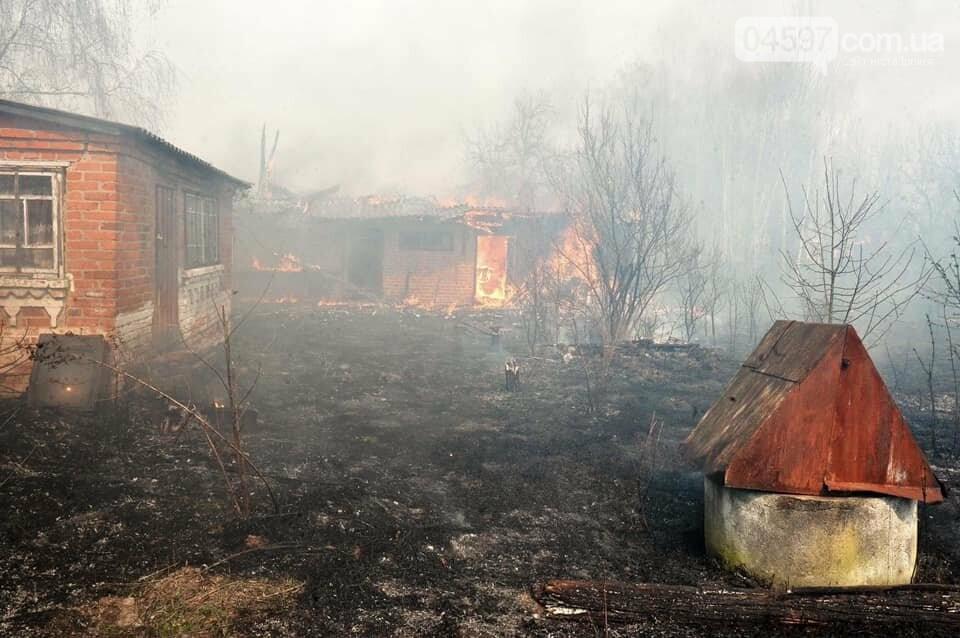 Як у фільмі жахів: пожежі в Чорнобилі знищили ліс та села, фото-6