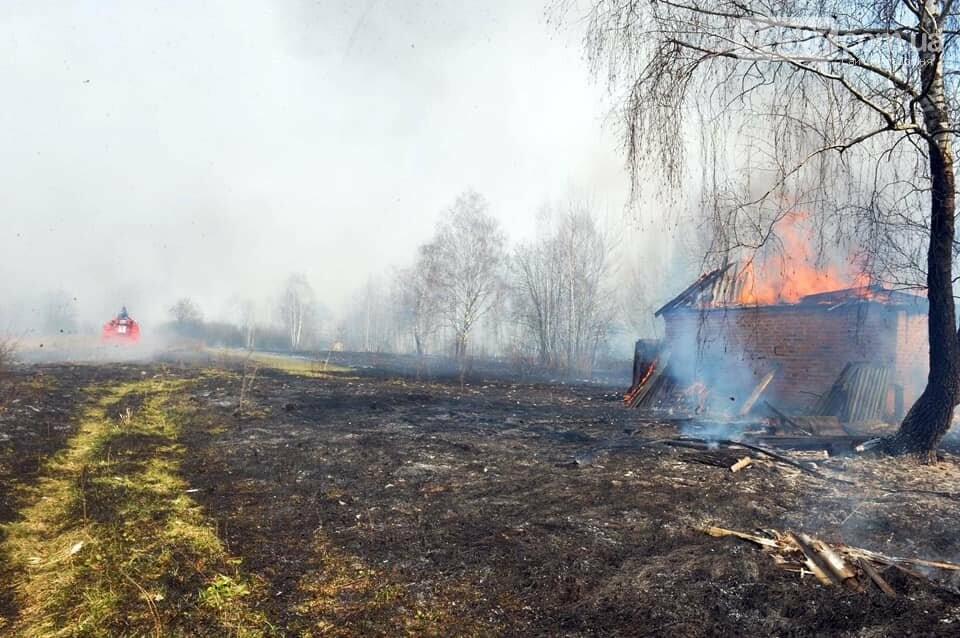 Як у фільмі жахів: пожежі в Чорнобилі знищили ліс та села, фото-5