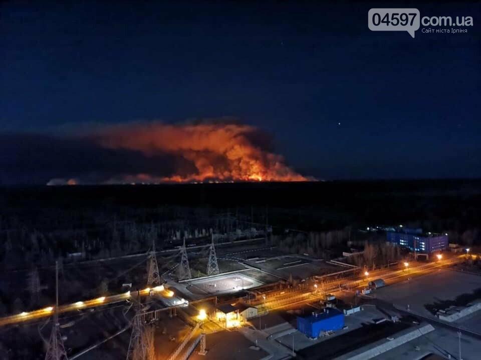 Як у фільмі жахів: пожежі в Чорнобилі знищили ліс та села, фото-3