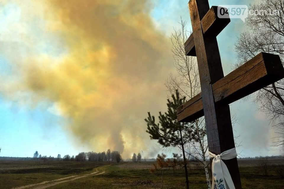 Як у фільмі жахів: пожежі в Чорнобилі знищили ліс та села, фото-1
