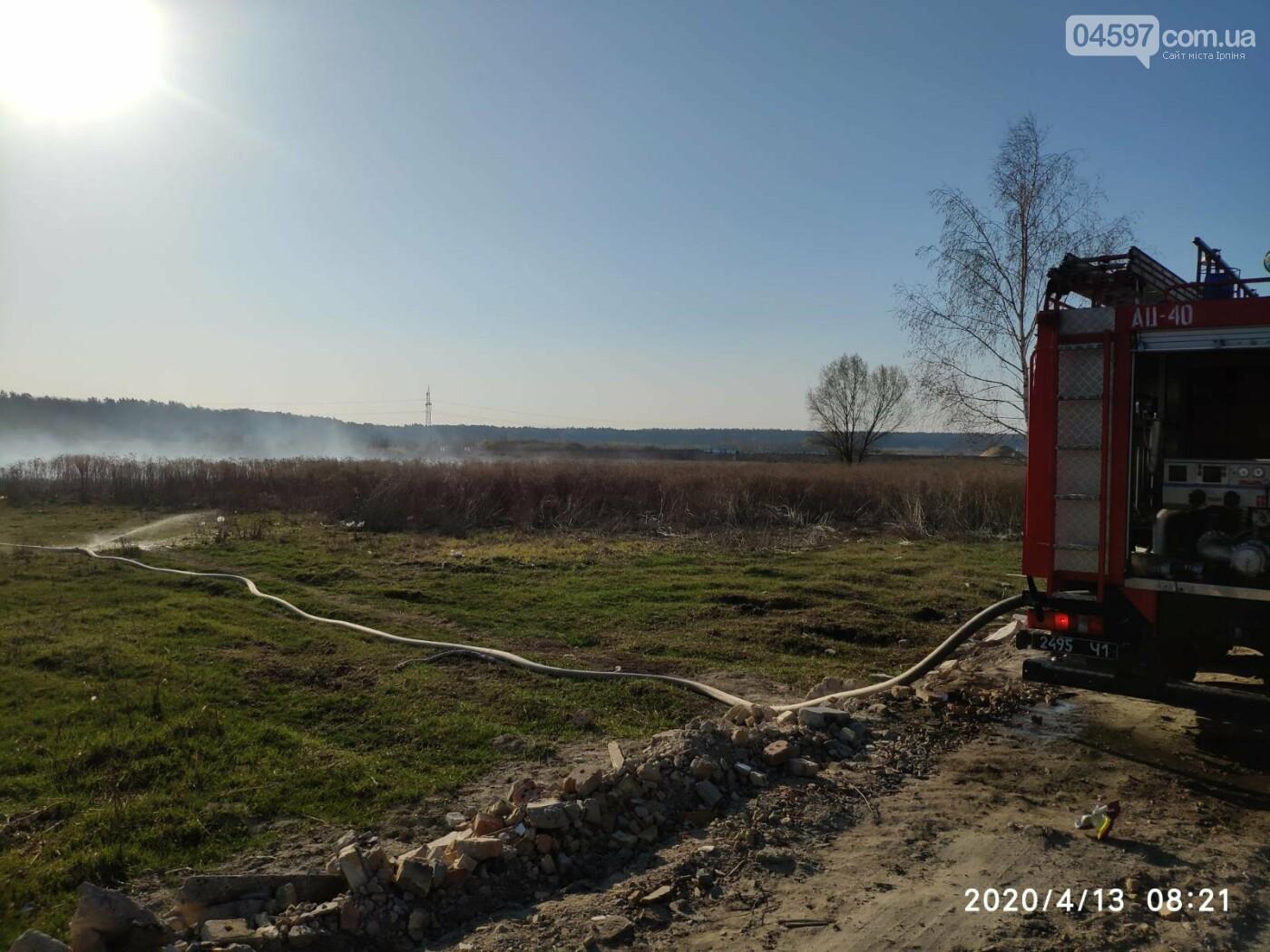 В Ірпені горить торф, фото-2