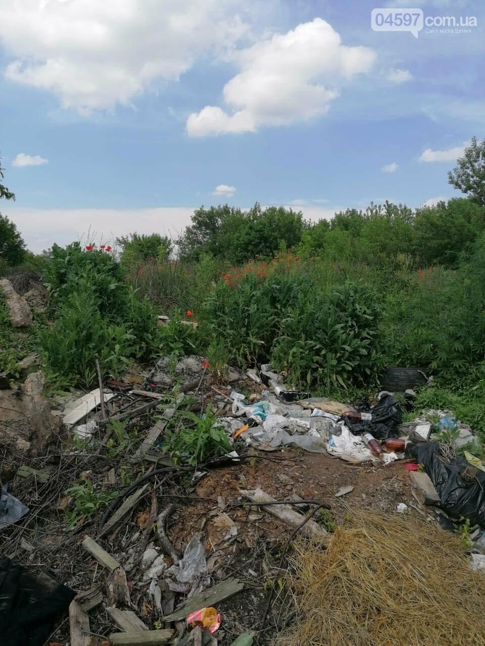 Максим Плешко: звільнимо Гостомель від старого сміття!, фото-8