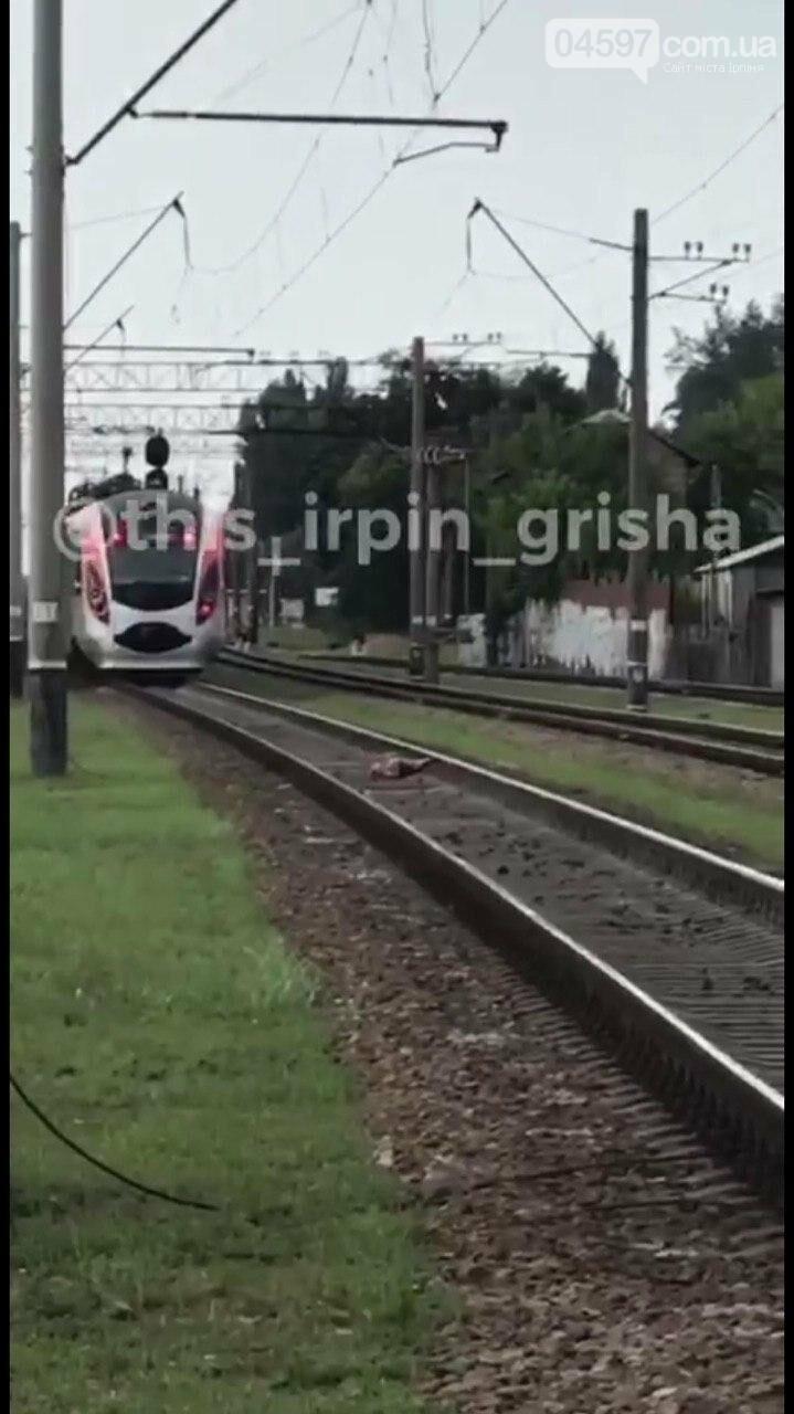 В Ірпені поїзд збив людину, фото-1