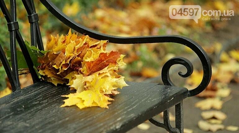 Справжня осінь: 22 вересня- день осіннього рівнодення, фото-1