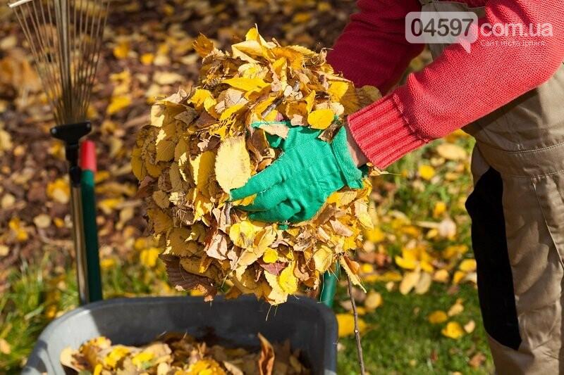 Городні роботи восени: як підготувати землю і рослини до холодного сезону, фото-1