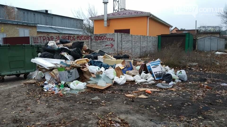 Стихійне звалище біля садочка в Гостомелі: люди занепокоєні, фото-3