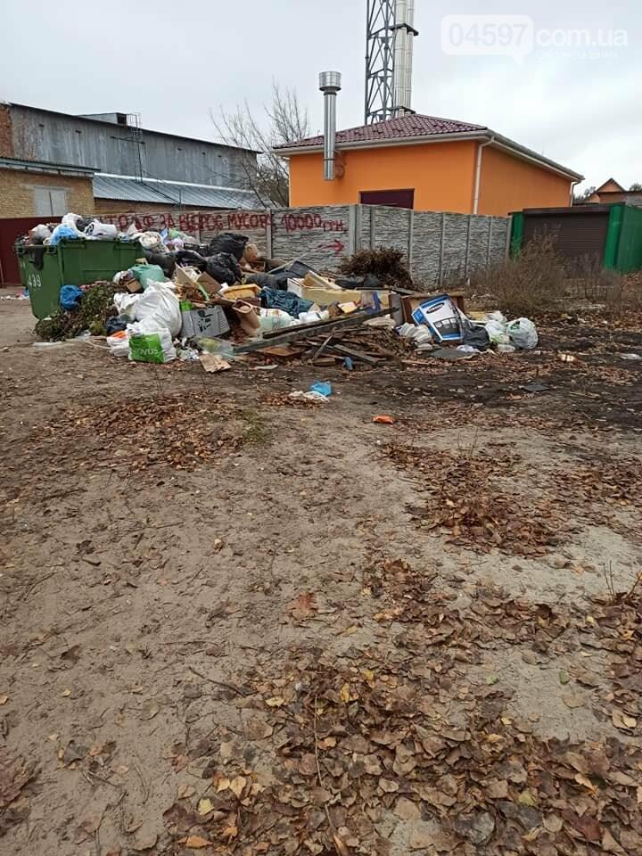Стихійне звалище біля садочка в Гостомелі: люди занепокоєні, фото-1