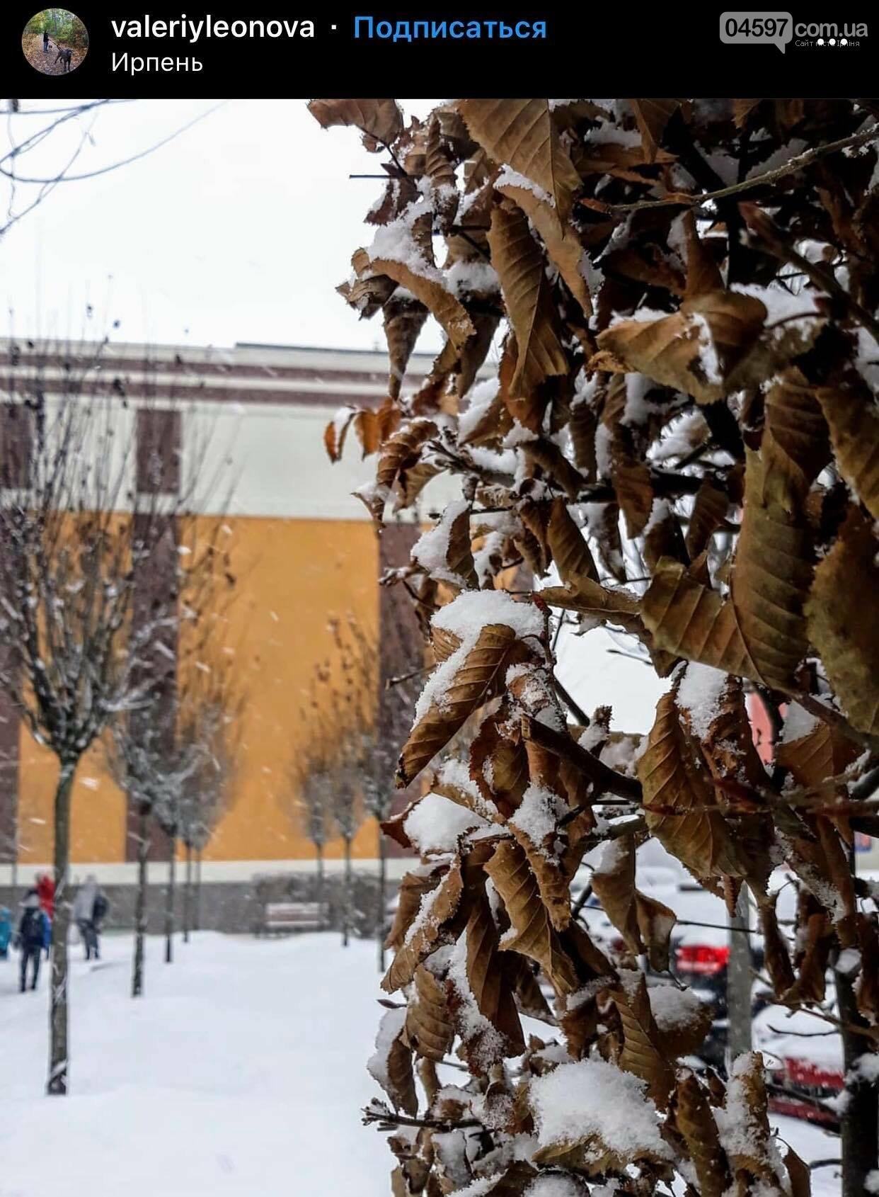 Сніг в Ірпені