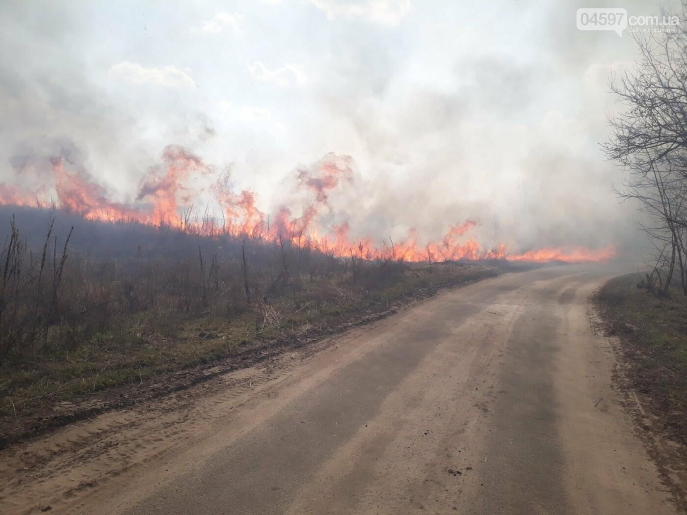 На Київщині палав сухостій
