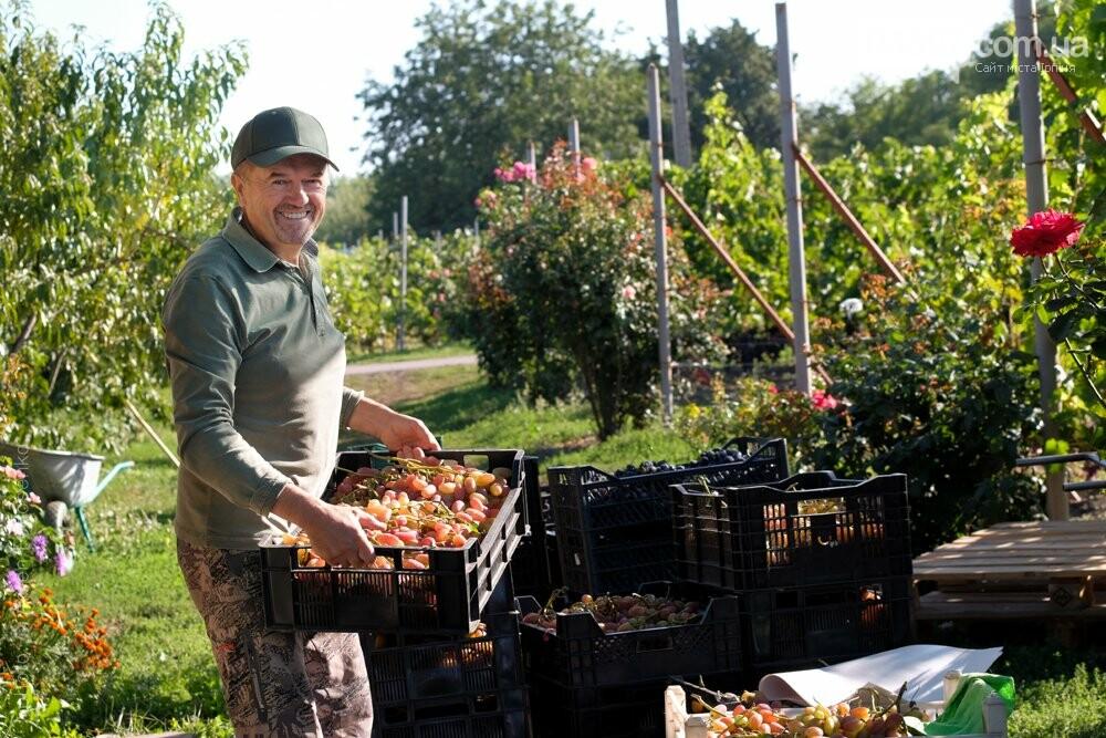 Виноробні неподалік від Ірпеня, де можна продегустувати вино, фото-3