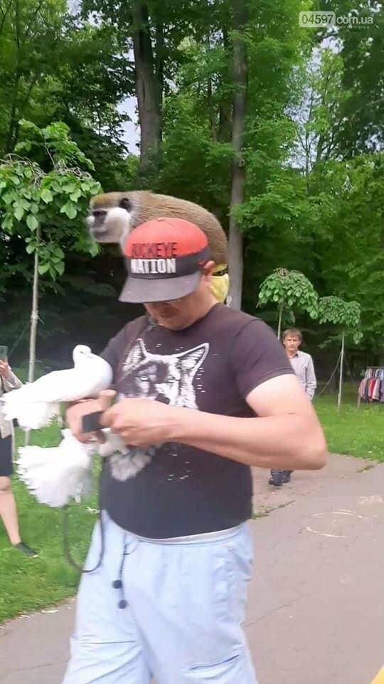 У Бучі здійнявся скпндал проти експлуатації тварин для фото і відео за гроші